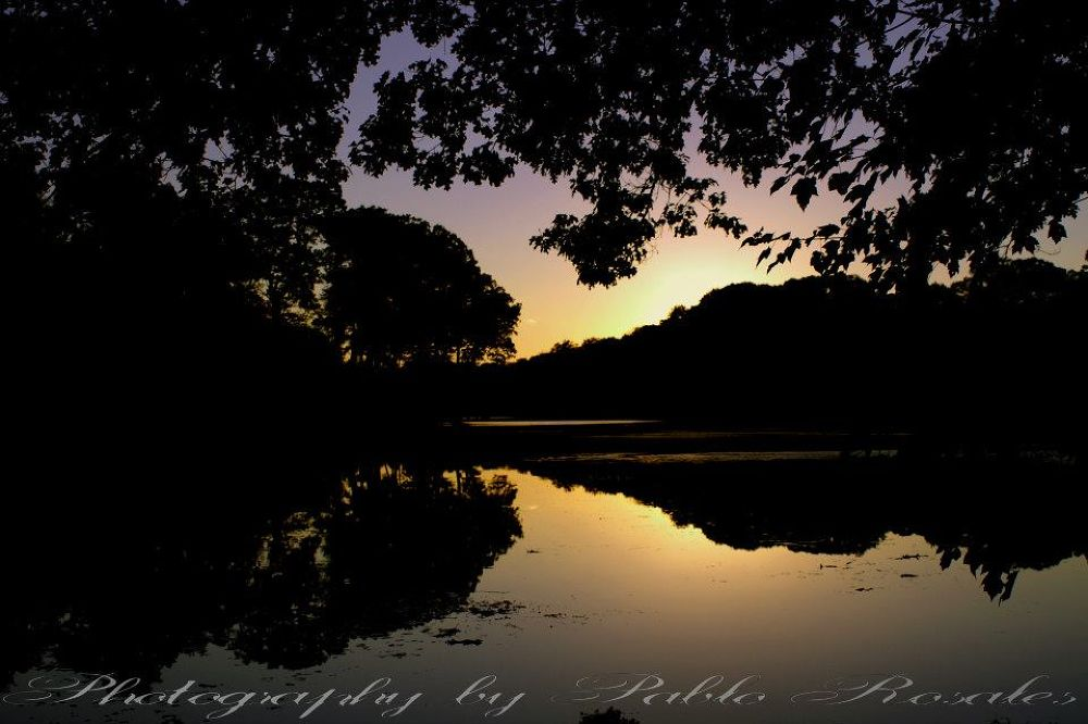 Buttonwood Sunset by Photography by Pablo Rosales
