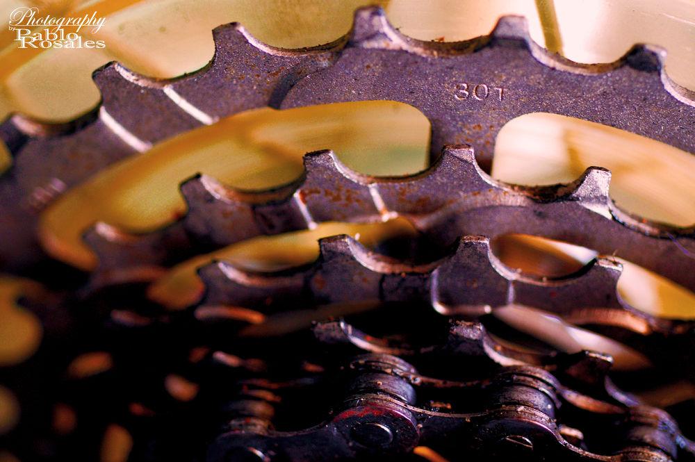 Photo in Still Life #gears #rust #bicycle #bike #bicicleta #chain