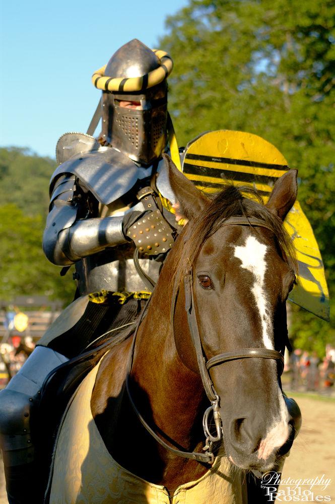Photo in Random #new york #renaissance #faire #knight #joust #horse