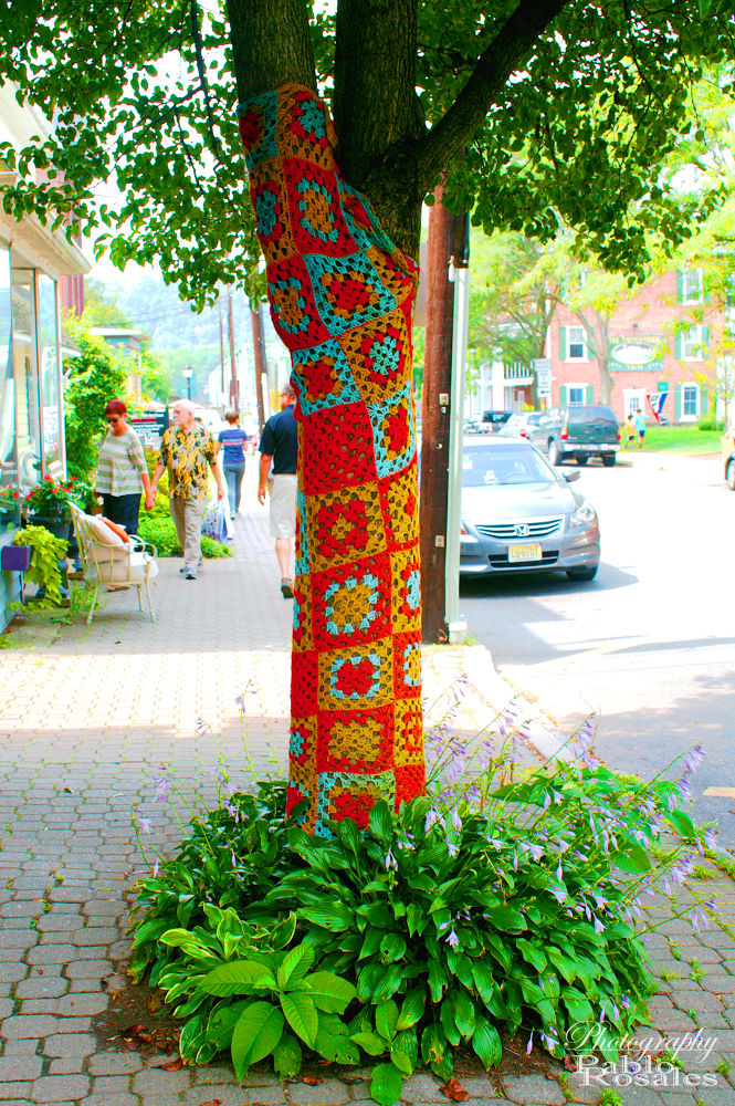 Photo in Street Photography #yarn #bomb #frenchtown #tree