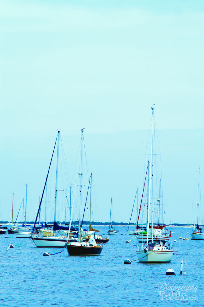 Photo in Sea and Sand #sail #boat #marina #jersey #shore #atlantic #highlands