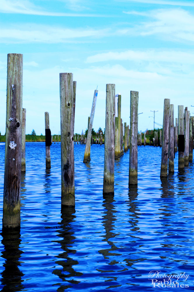 Photo in Sea and Sand #poles #posts #canal #reeds #jersey #shore #west creek