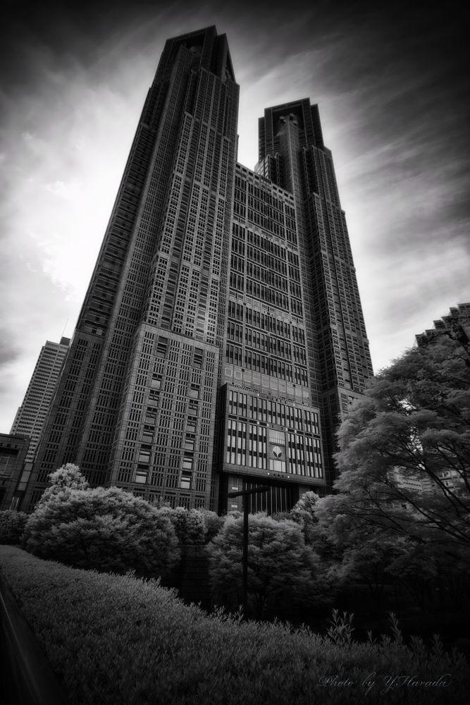 Shinjuku by Yuichi Harada