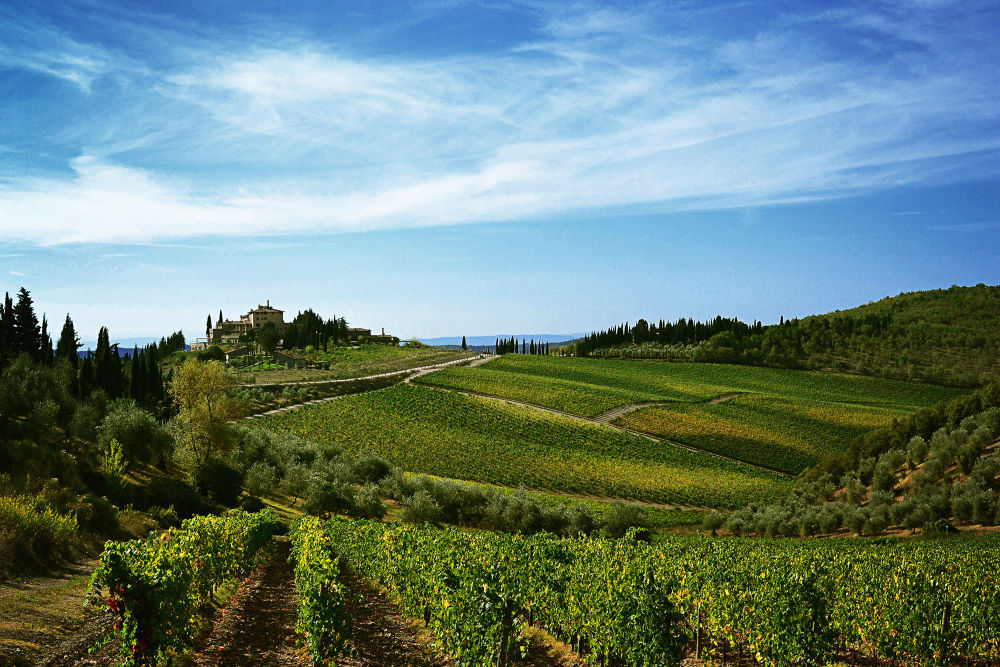 Toscana by Jimmy Duarte