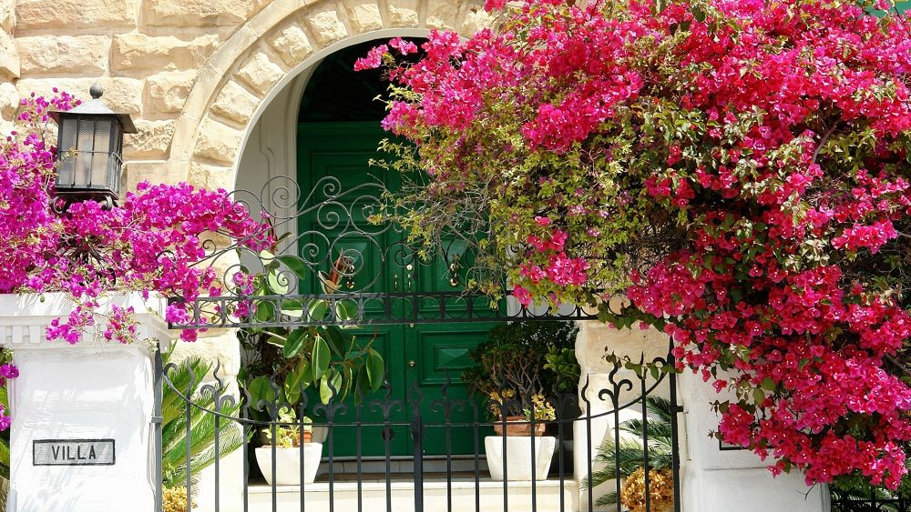 Malta by Japonkat