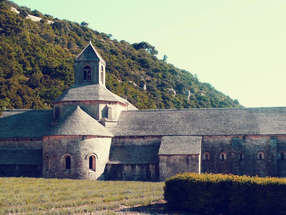 sénanque abbey by Máté Csöbönyei