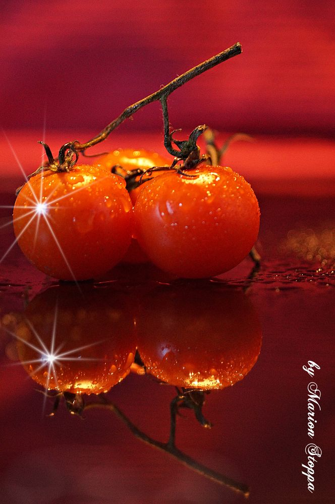 Photo in Food #food #red #tomato