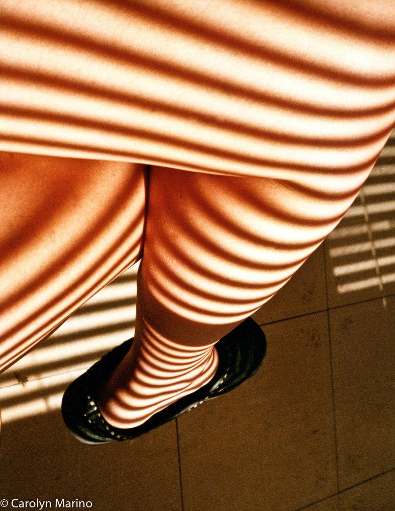 Leg with sunlight from window by Carolyn Marino