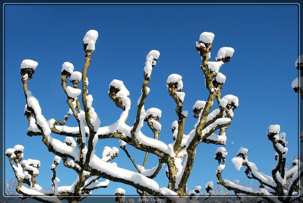 Sneeuw in Amsterdam by Astrid Vuurpijl