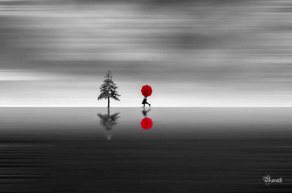 Photo in Fine Art #red #walk