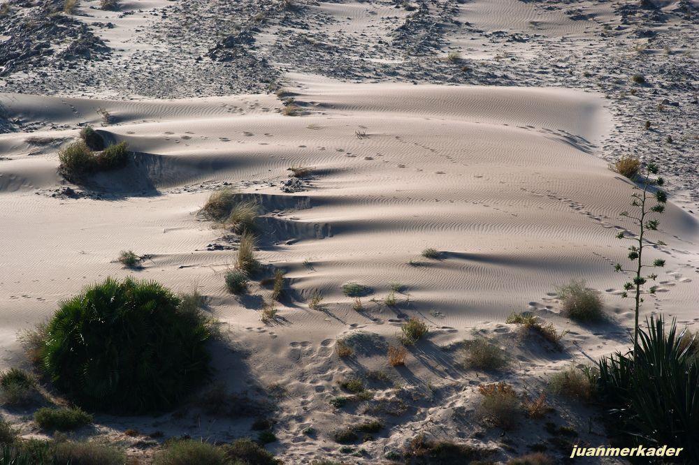 Desierto a la entrada de Genoveses by JuanMercader