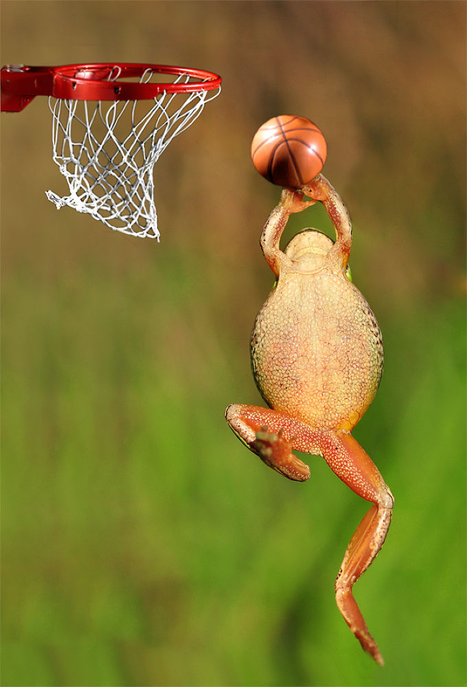 Basketball by darkdiamond67