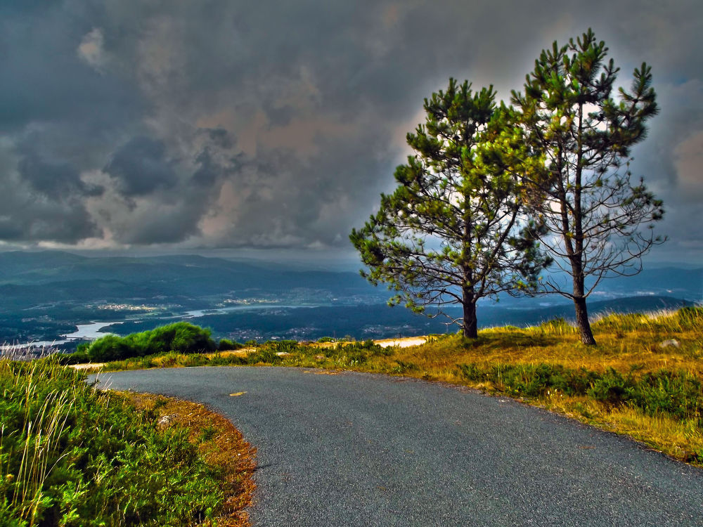 Nature by almulalala