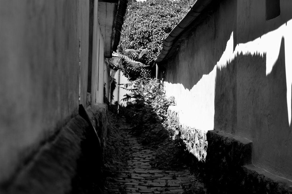 DSC_6314 bejáró (passage) by szabomarcona