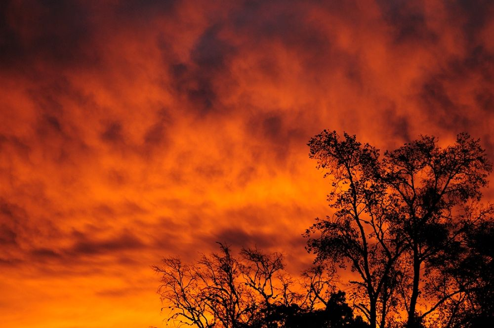 Cielo Rojo by forescout