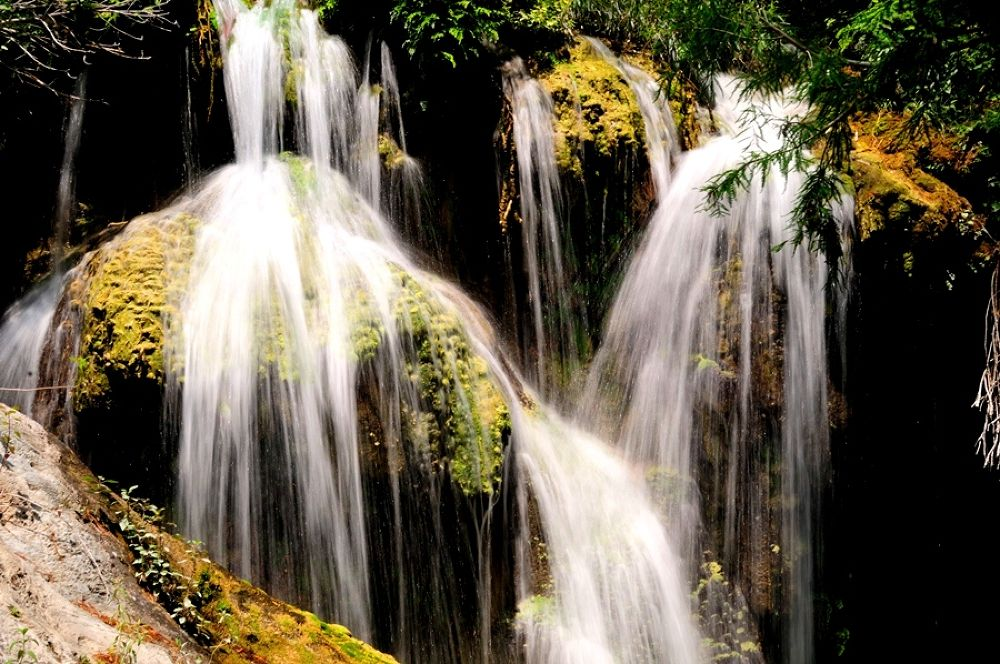 Cascada by forescout