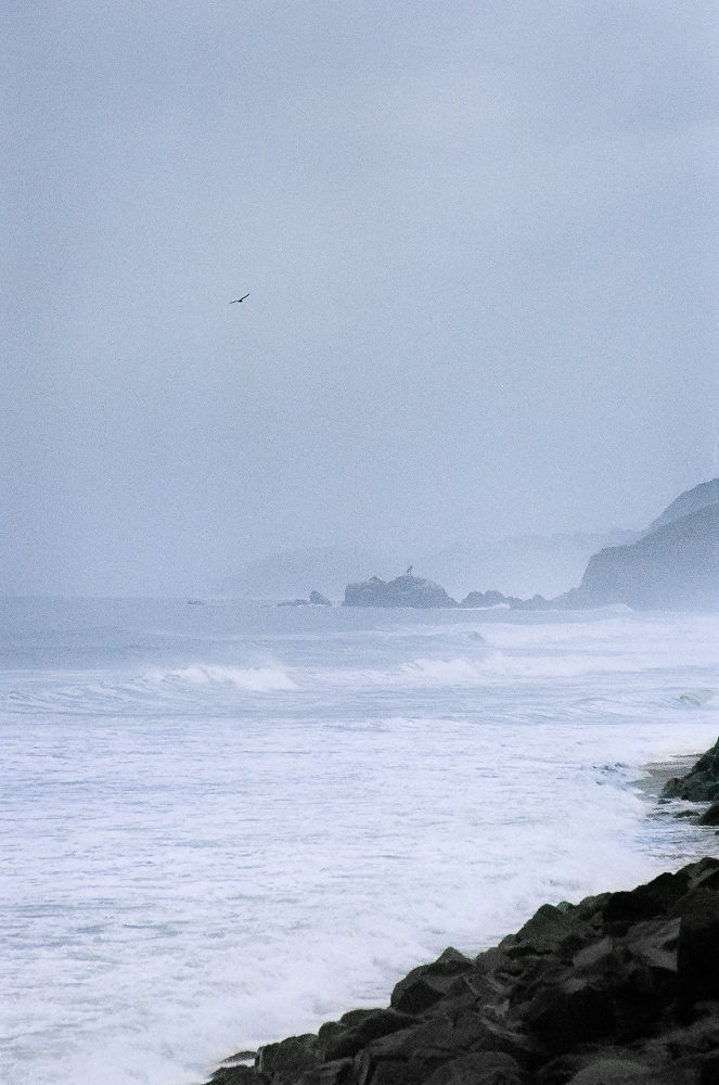 Photo in Landscape #california #landscape #pacific ocean #water #waves #fog #rain #weather #bird #mussel rock #rocks #surf #pacifica #35mm film #superia 400