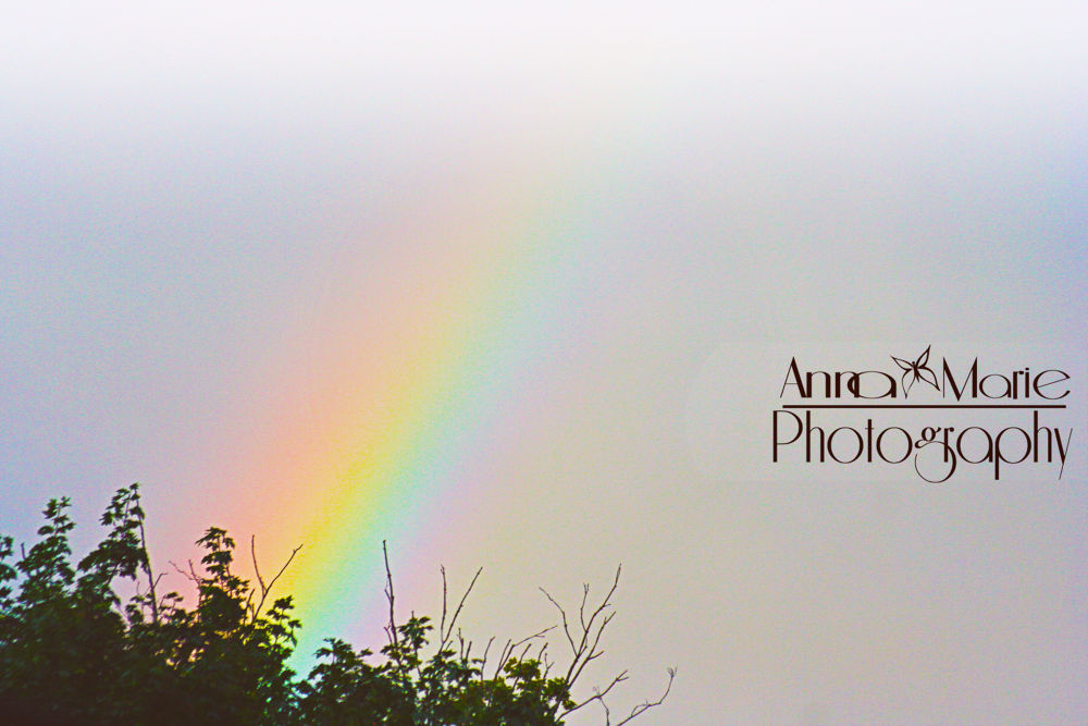 Check out more of my work at www.facebook.com/annamariephotographyy :) by Anna-Marie Photography