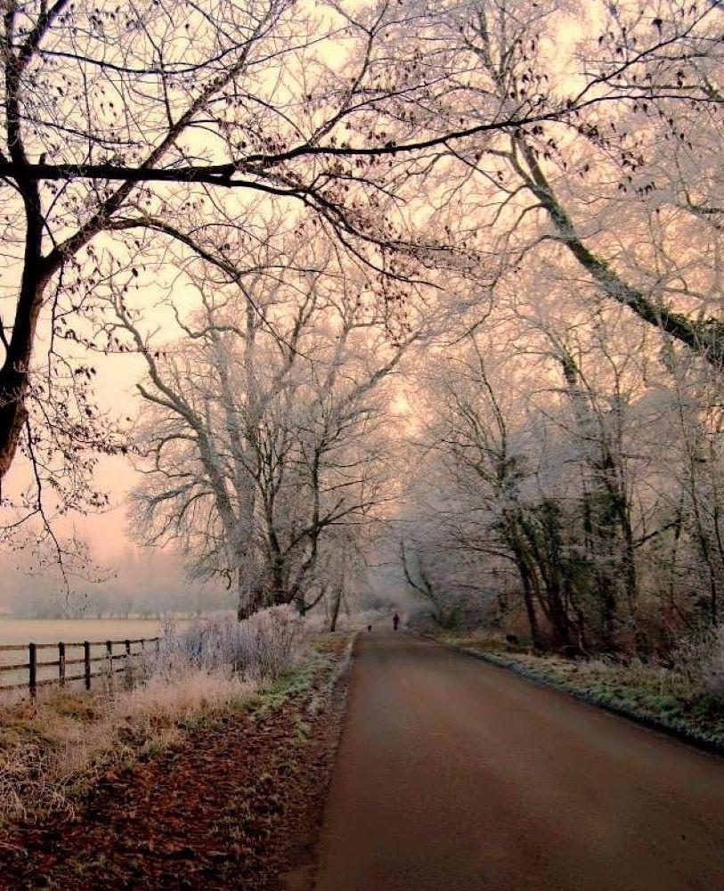 Frosty Sunrise by sallyjohnson31586526