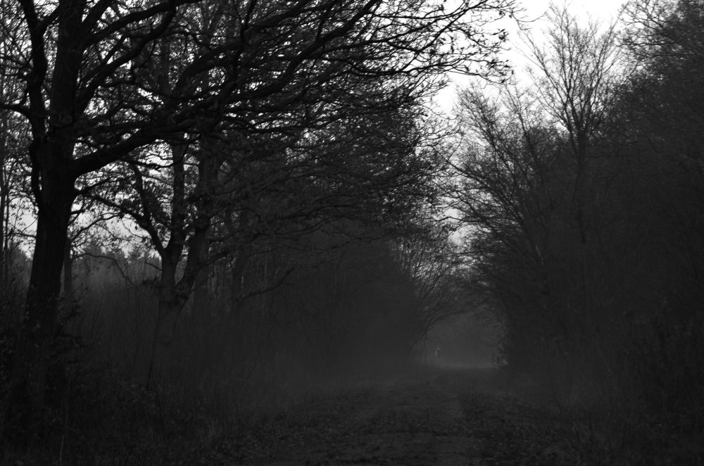 Figure In The Mist by alanbritton33