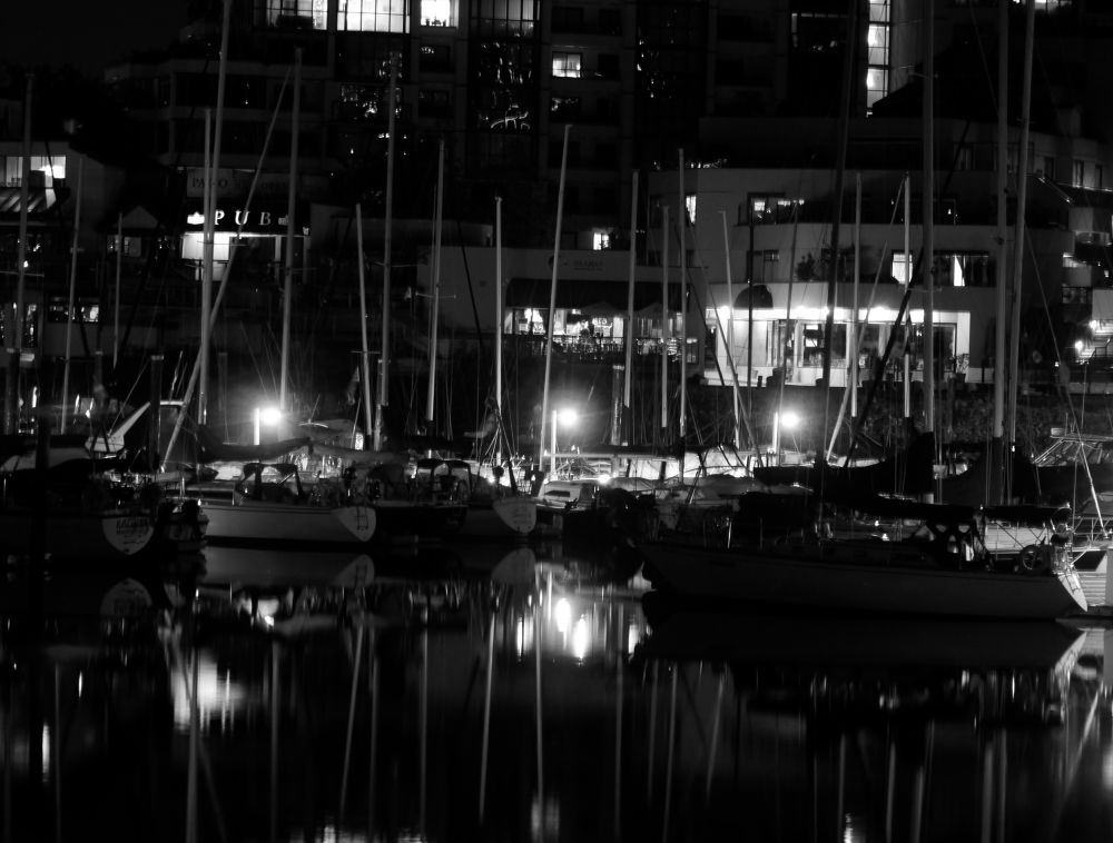 Midnight at the Marina by electricwarrior