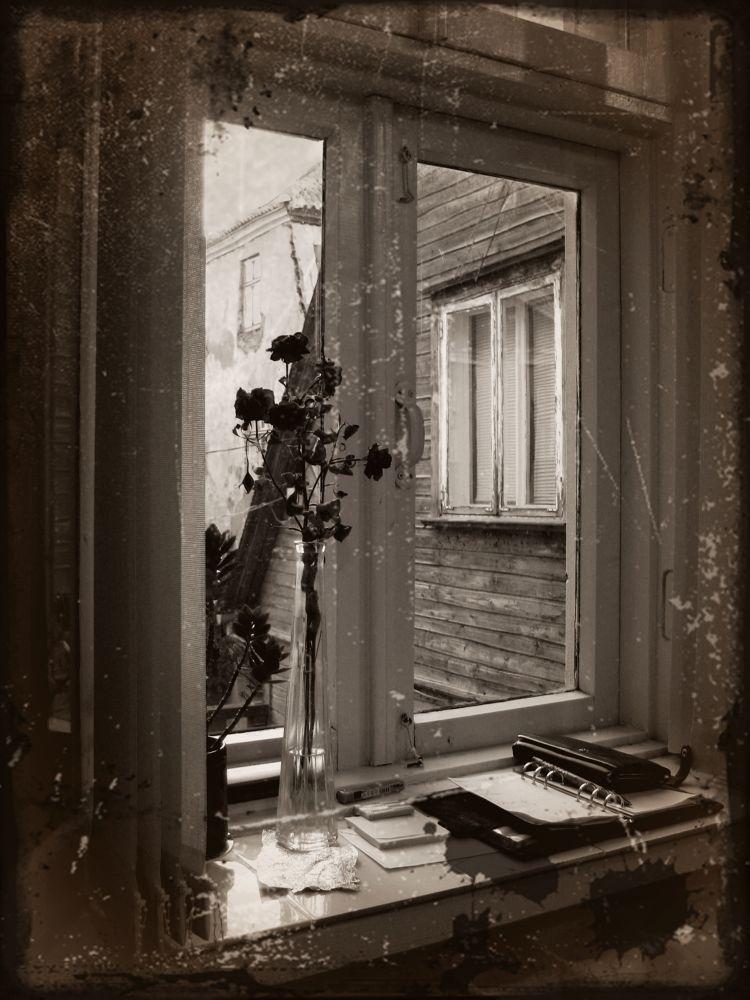 Window by Marko Toomast