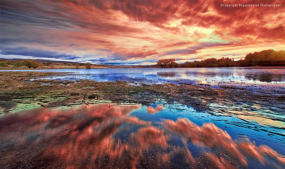 Reflection by regayipkocak