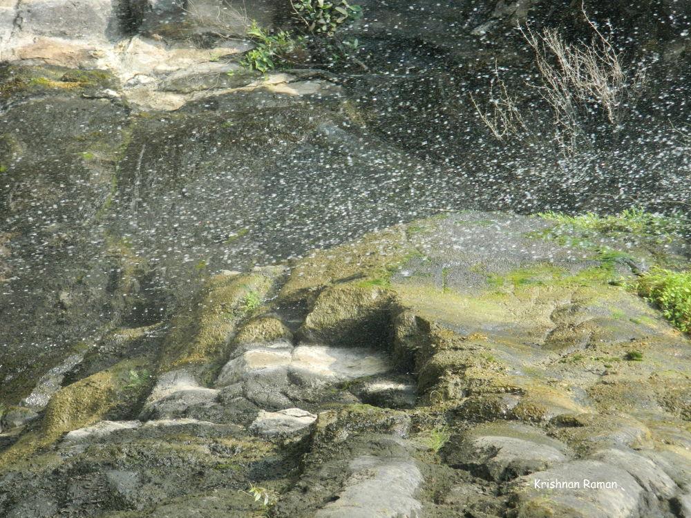 """""""Pearles of droplets"""" by krishnanraman1460"""