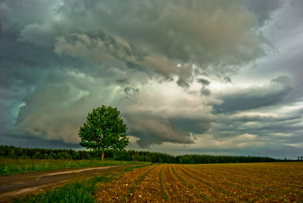 perfect-storm77969 by ballazoltan5