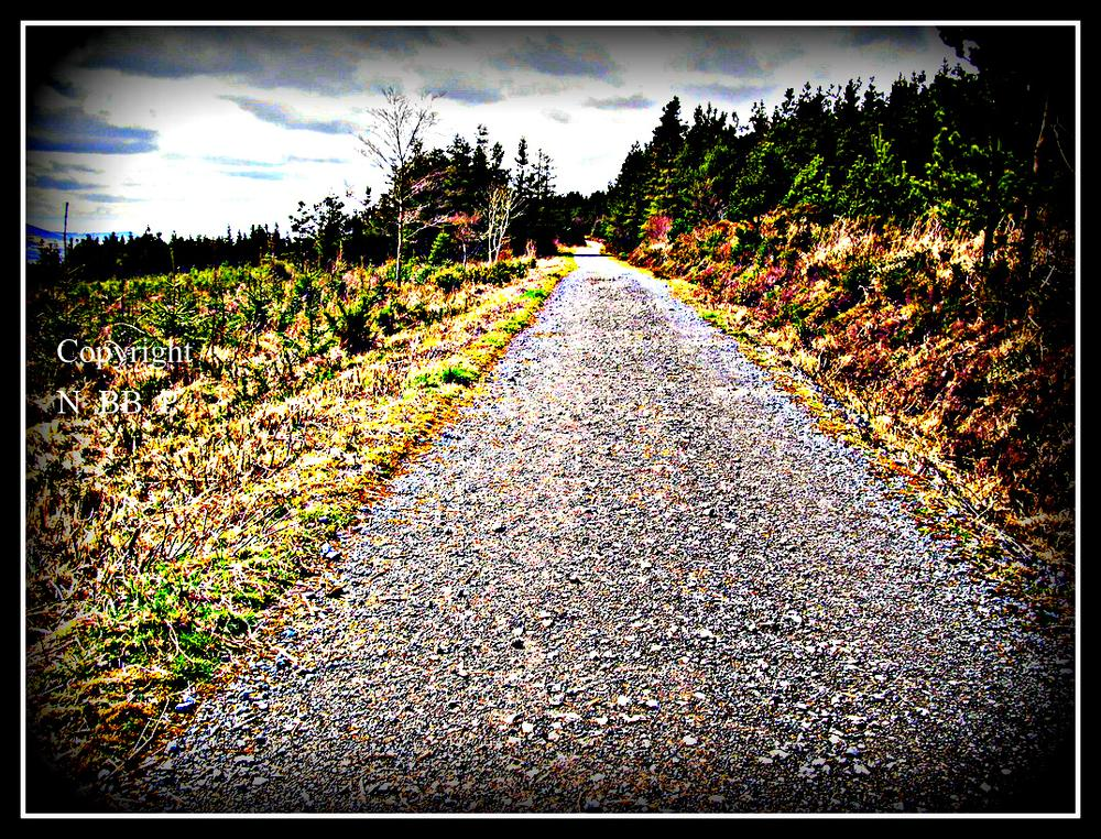 NED ROAD WALKING by Nedbuckleyphotography