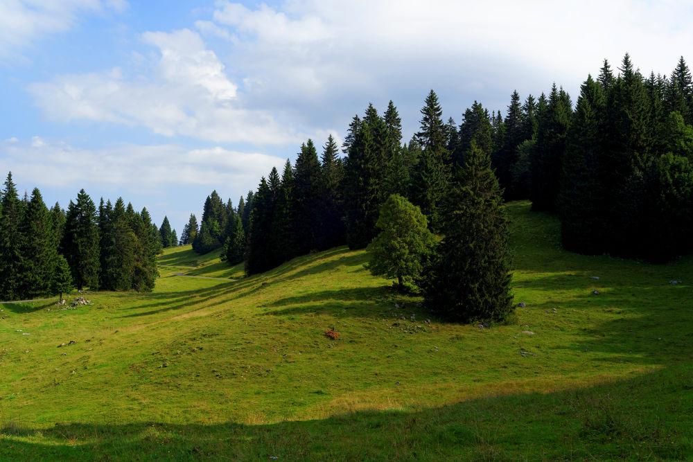Parc naturel régional Jura vaudois. Suisse. 06-09-2013 (3) by Vladimir Domashko