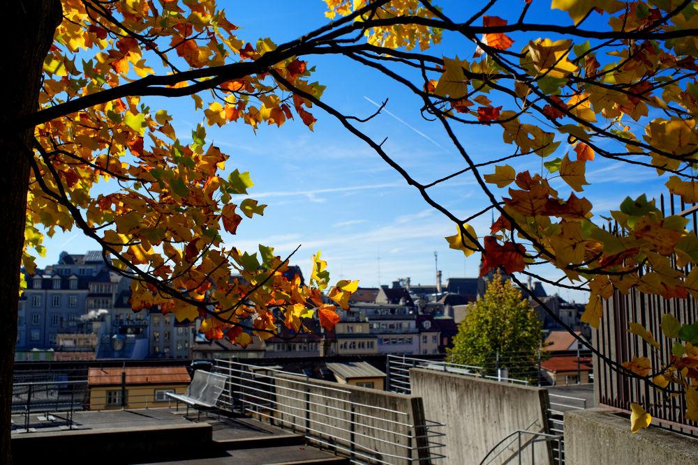 Lausanne, Suisse, 19-10-2013 by Vladimir Domashko