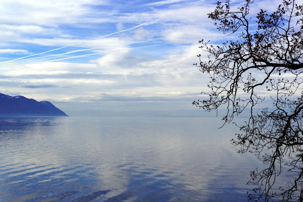 Lac Léman, 22-12-2013 by Vladimir Domashko