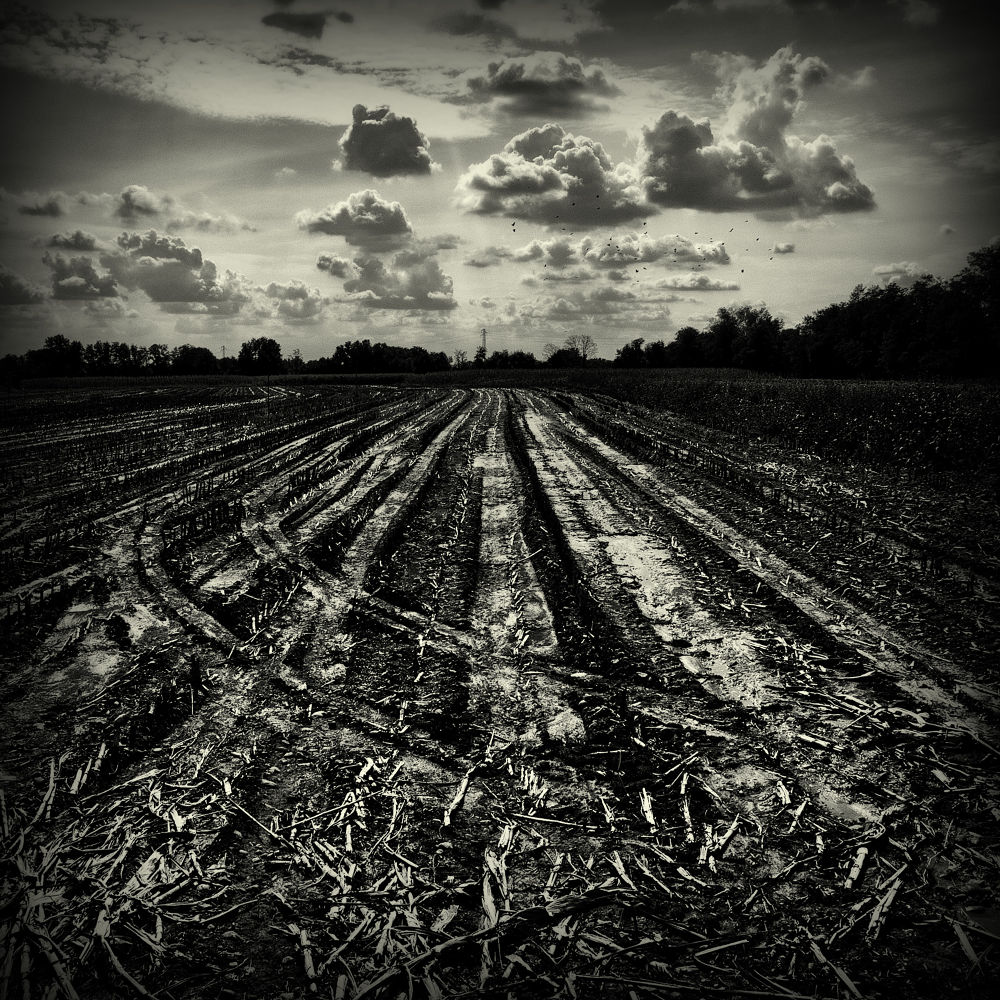 Country perspective by LuGiais
