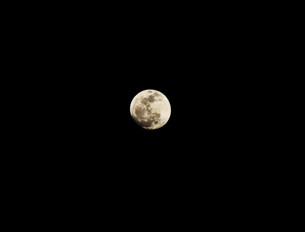 Full Moon by alonzo78