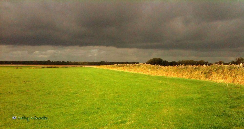 Photo in Landscape #cathy minnebo #landscape #holland #heiloo