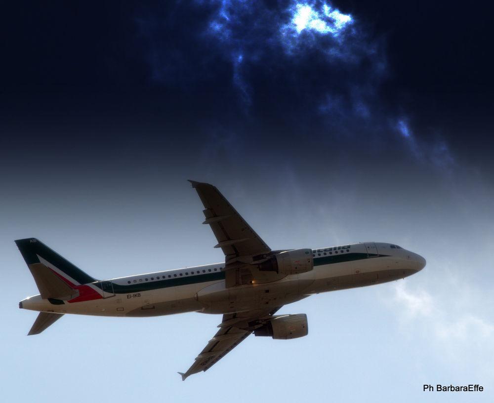 Volare.... by barbaraeffe
