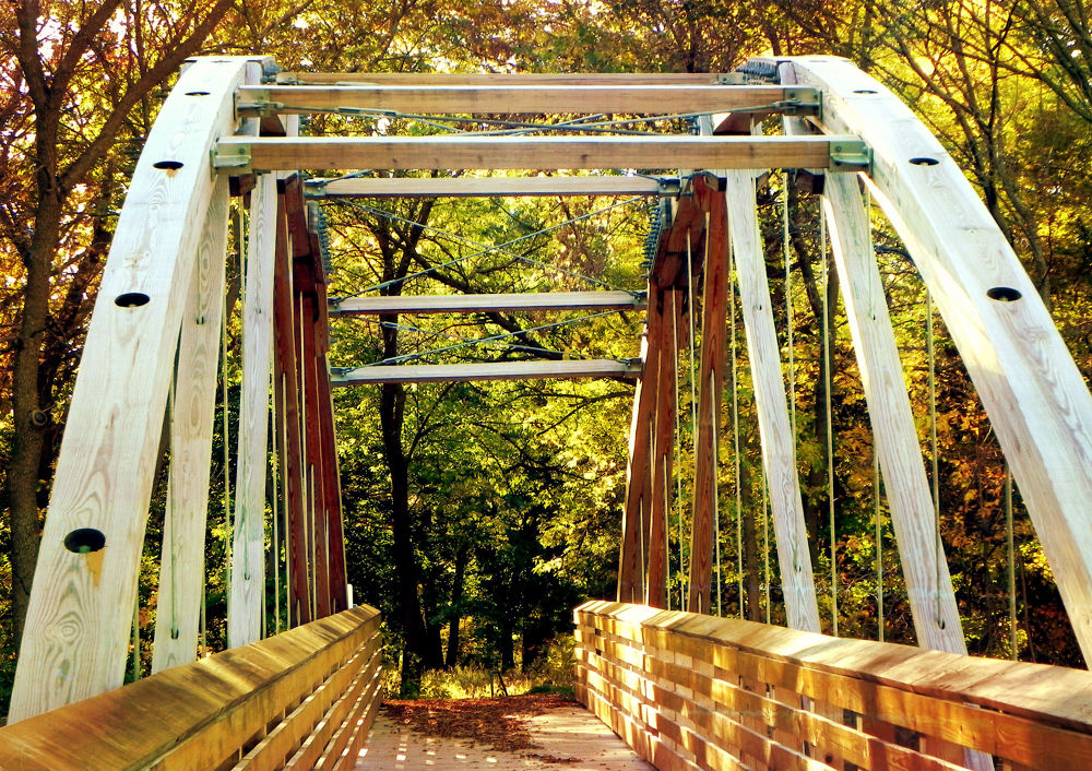 Photo in Nature #bridge #wood #metal #nikon #nature #trees #path #woods #autumn #fall #leaves #grass