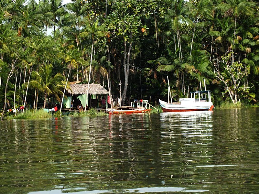 Rio Guajarazinho - Abaetetuba - Pará - Brasil by Rui Oliveira Santos