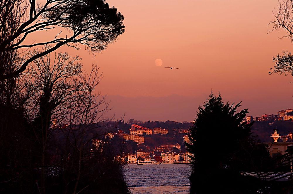 İstanbul by Bulent Cerci