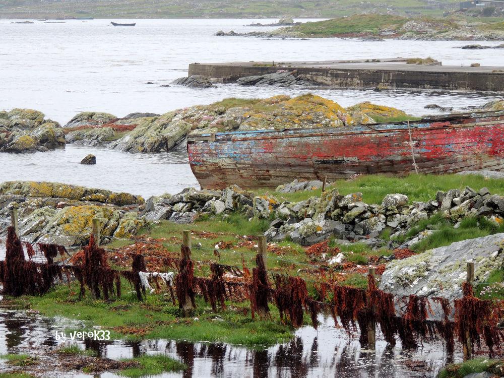 Photo in Random #boat #pêcheur #fisher #bateau #ireland #connemara #algues #seaweeds
