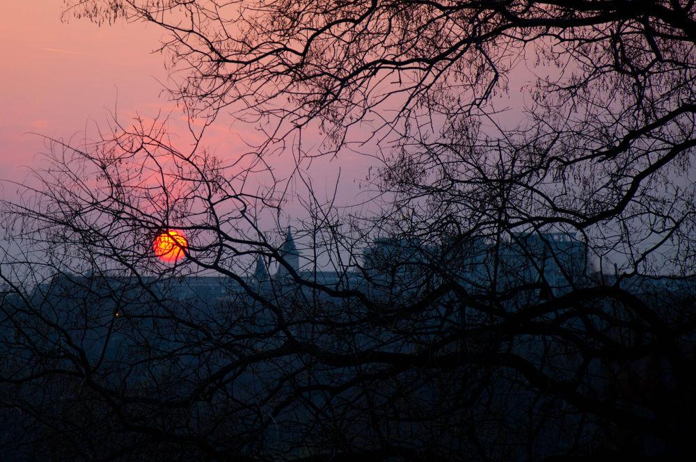 sun ball by daniela