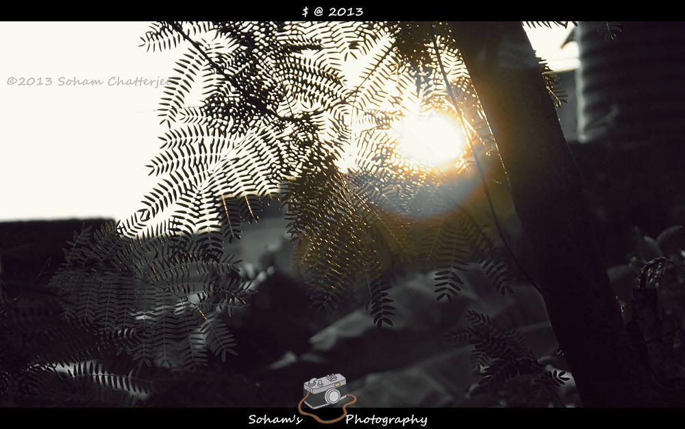 Blind by Soham Chatterjee