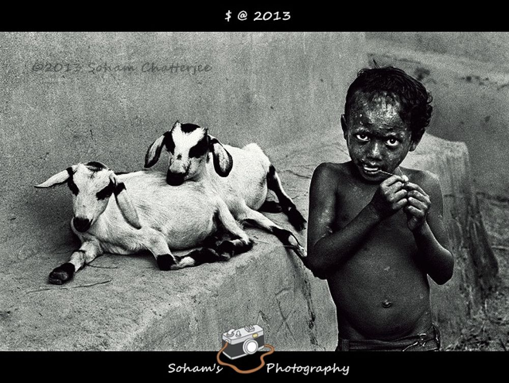 Photo in Street Photography #soham's photography #©2013 soham chatterjee #friends #macro #rural #animal #people #street photography