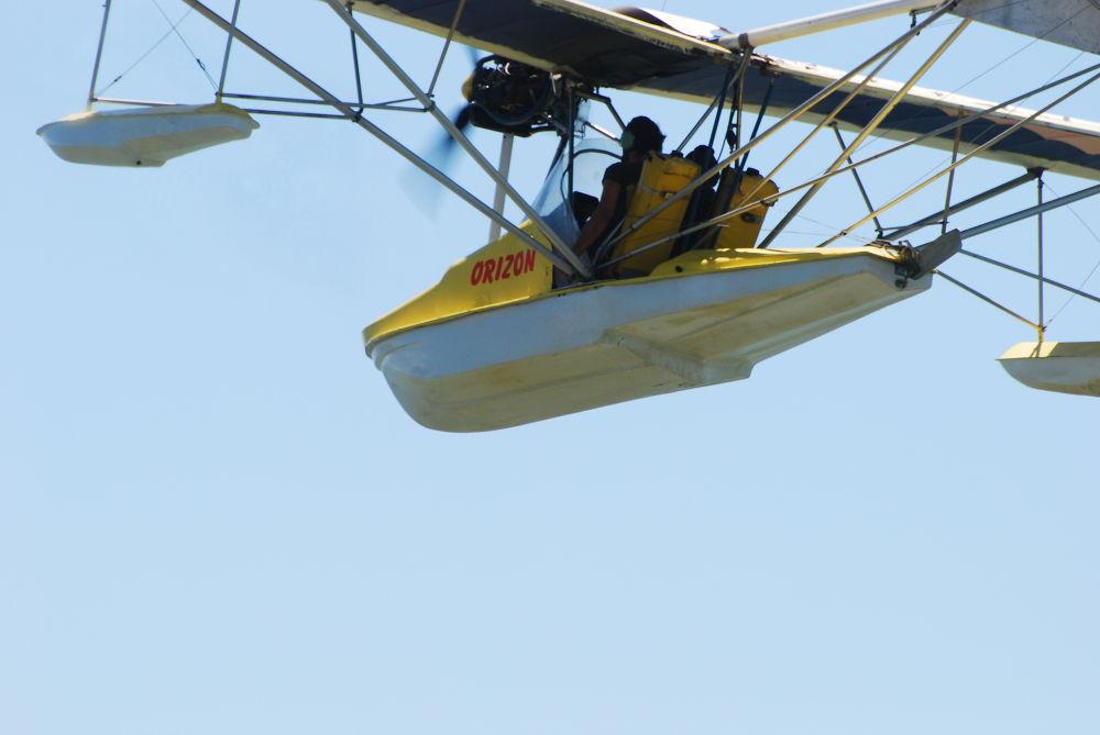 DSC_5745 a friend in the air  by pawel2reklewski