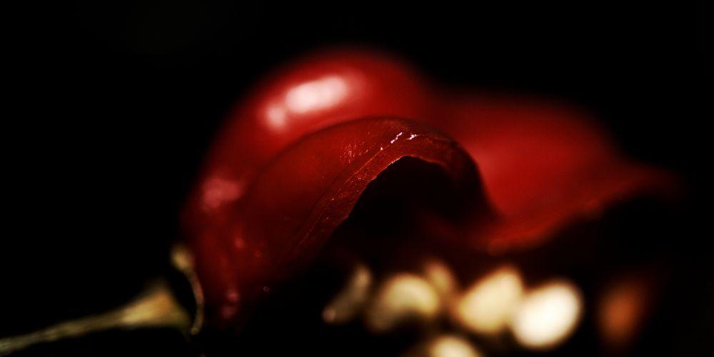 DSC_7532-1  hot love red  by pawel2reklewski