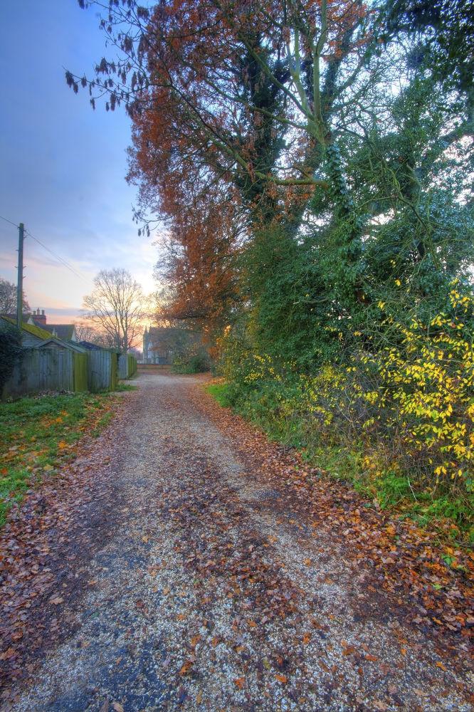 Trail by davidvalentyne