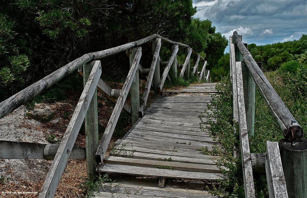The Bridge by Martha van der Westhuizen