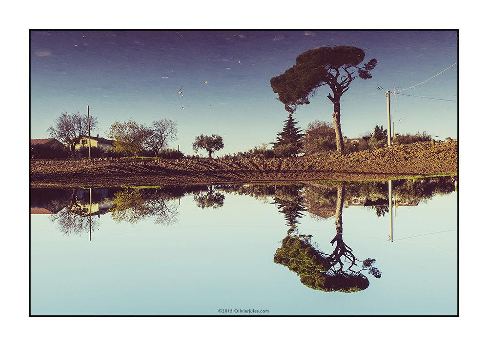 Landscape by olivierjules