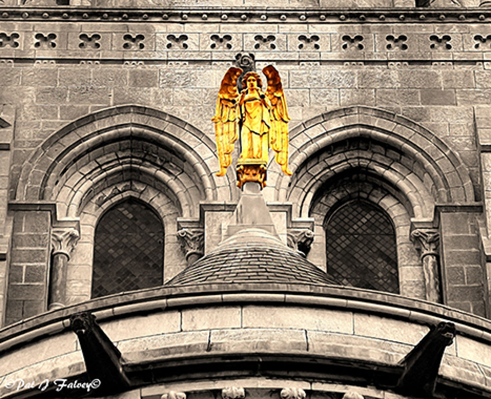 Saint Fin Barre's Cathedral  by patjfalvey